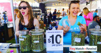 cannabis-2017-162
