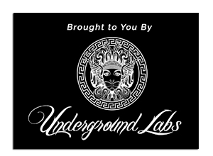 UNDERGROUND-LABS-WEB-USE.FINAL_.jpg