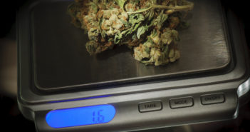 Weed on a marijuana scale weighing to be sold in coffeeshop