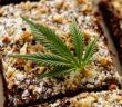 cannabis-2018-forward-27