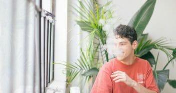 cannabis-2018-forward-61